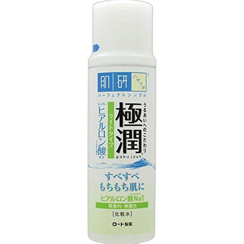 拮抗する眉をひそめるを除く肌研(ハダラボ) 極潤 ヒアルロン液 ライトタイプ 170mL