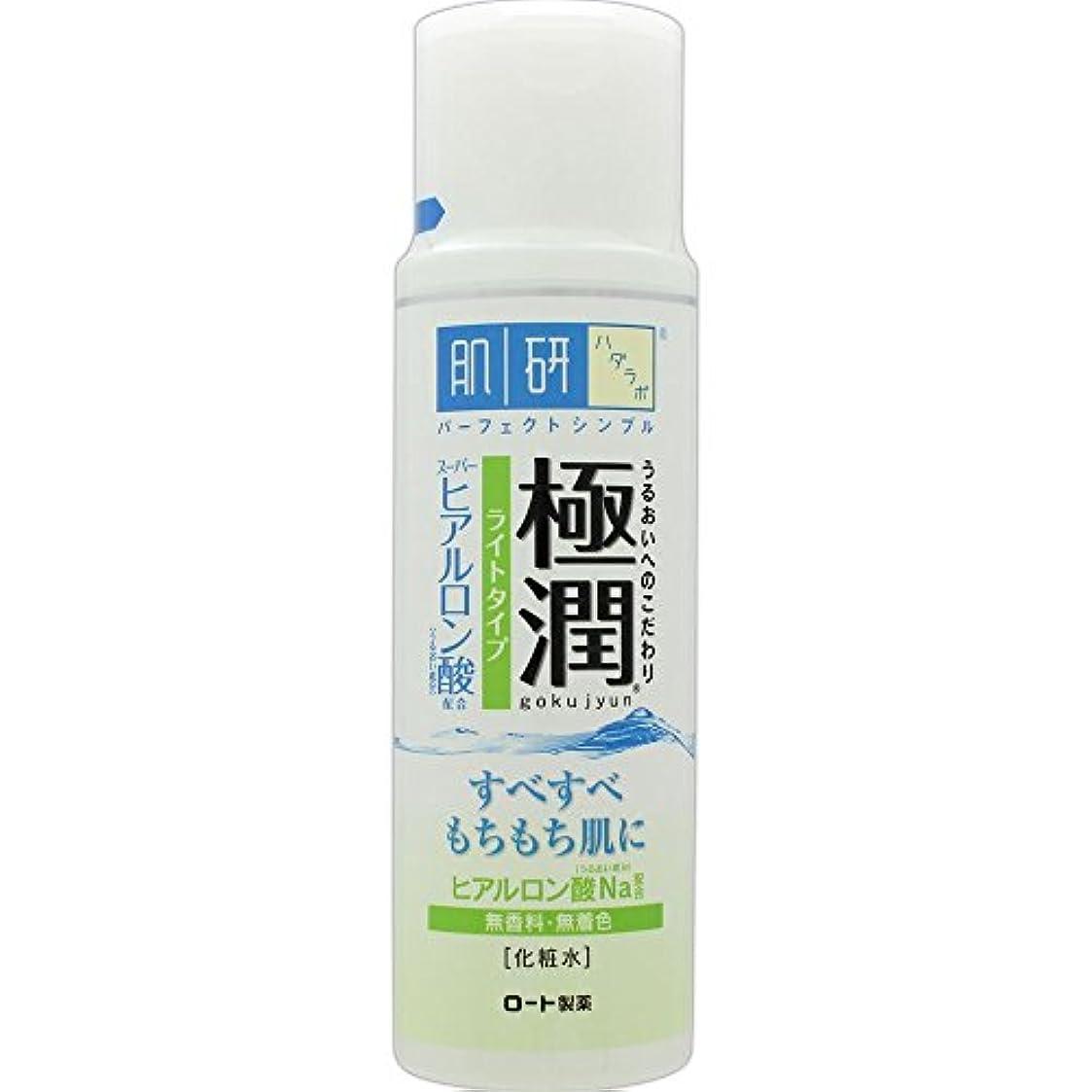 健康的意図プレート肌研(ハダラボ) 極潤 ヒアルロン液 ライトタイプ 170mL