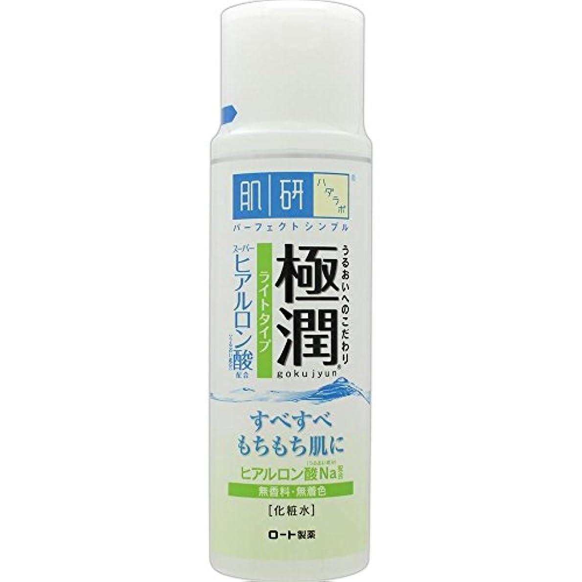 機動ピンポイント人道的肌研(ハダラボ) 極潤 ヒアルロン液 ライトタイプ 170mL
