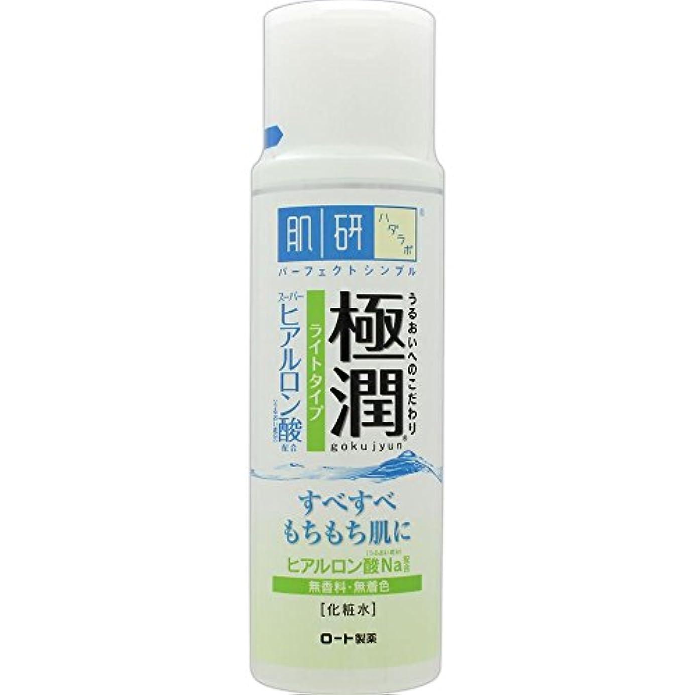 あいにくエキゾチック頻繁に肌研(ハダラボ) 極潤 ヒアルロン液 ライトタイプ 170mL