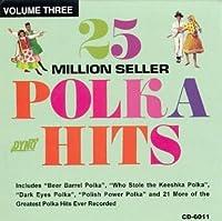 25 Million Seller Polka Hits 3