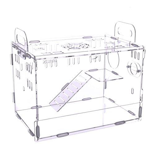 RoomClip商品情報 - POBO ハムスターケージ ハムスターハウス 階段付き 持ち手付き 通気用の穴いっぱい 透明度有り アクリル製 ハムスター家 (S, 無色透明)