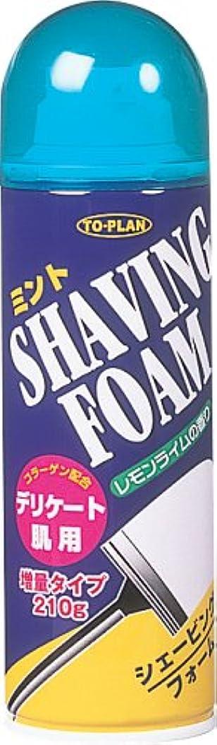 本物のグラフィック平等シェービングフォーム ミント レモンライムの香り 210g