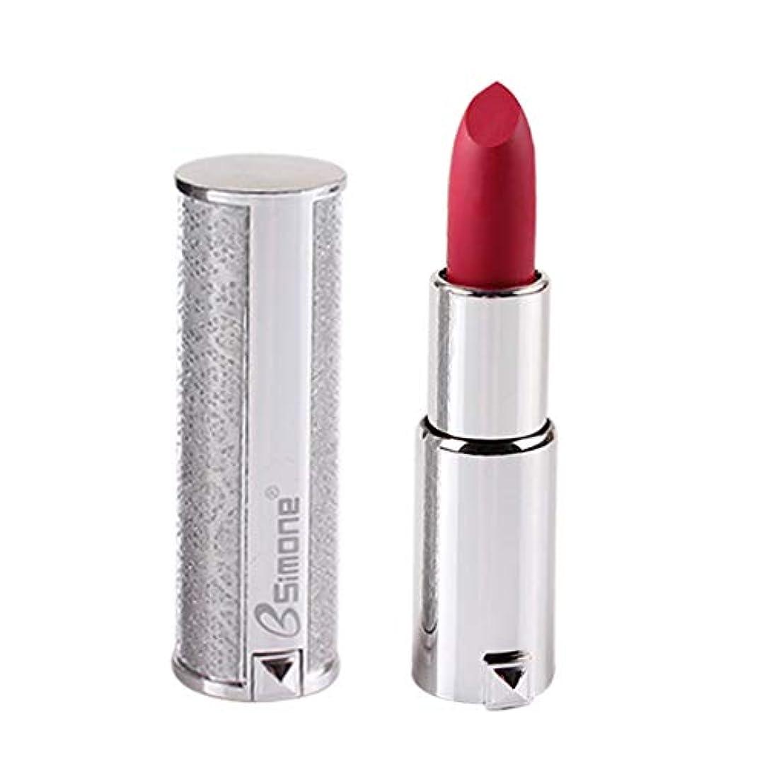 観点少し出席銀製の口紅の保湿剤のビロードの金属の口紅の化粧品の美の構造