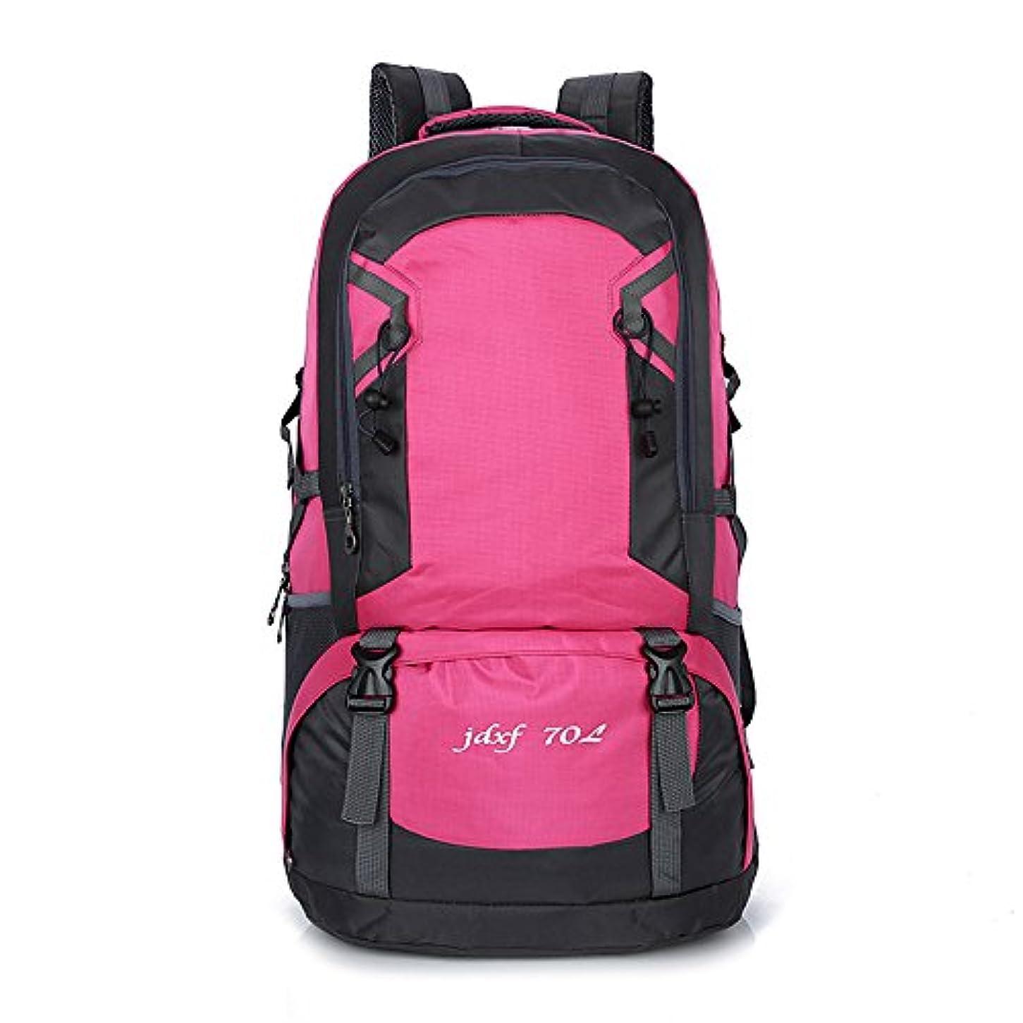 連合個人会社ユニセックス 登山バッグ 大容量防水 旅行キャンプ ハイキングコース レジャースポーツ 多機能 屋外での使用に適しています 軽量野外活動バッグ (色 : ローズ)