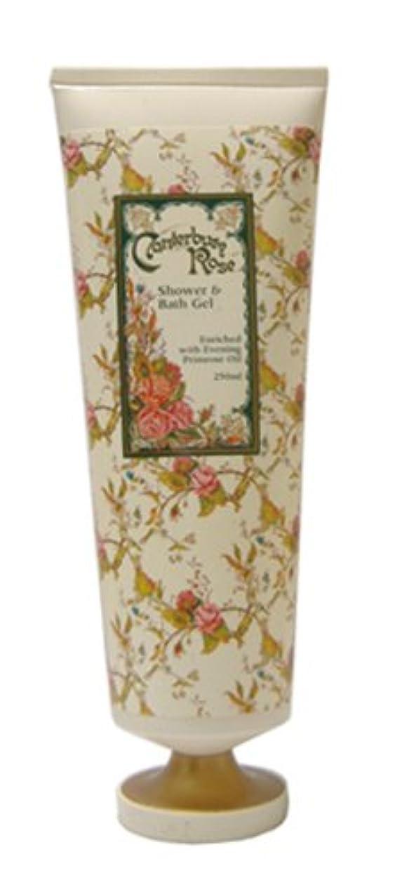 意味のある緩むレモンCANTERBURY ROSE シャワー&バスジェル250ml