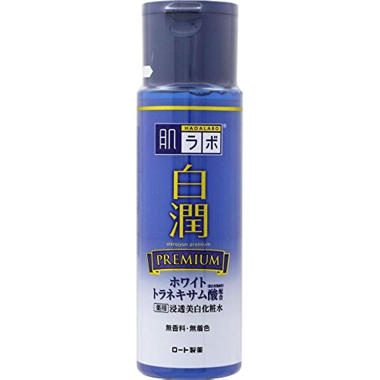 棚考案するゲージ肌ラボ 白潤プレミアム 薬用浸透美白化粧水 170mL (医薬部外品)