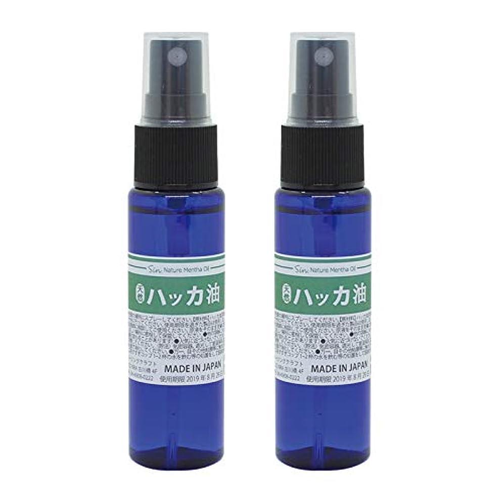 思い出すアームストロング公演日本製 天然ハッカ油(ハッカオイル) スプレー 30mL×2本