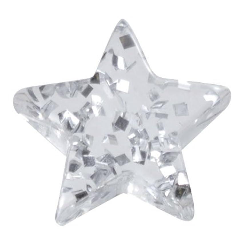 長々と与える保守可能リトルプリティー ネイルアートパーツ 星ラメ 5個