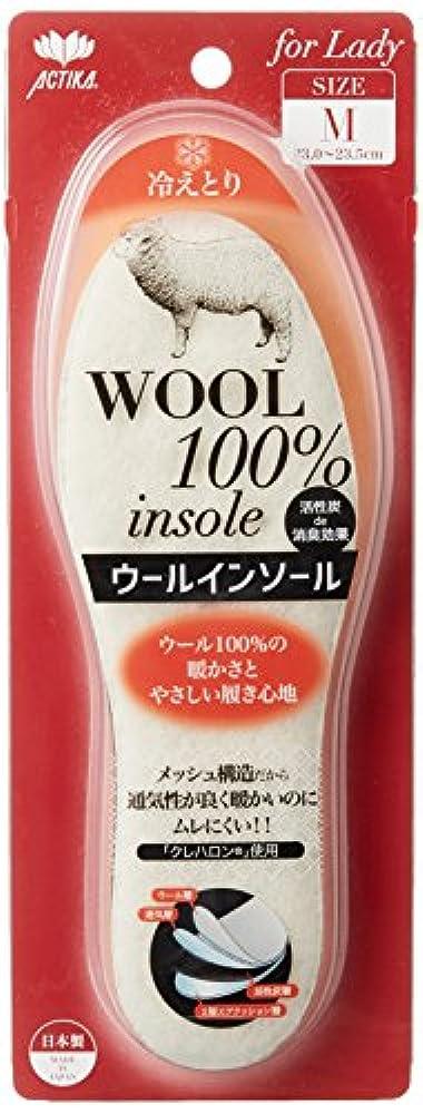 言い聞かせるフリッパー否定するウインターアクティカ ウールインソール 女性用 活性炭入り No.106 L(24.0~24.5cm)