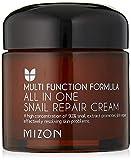 MIZON All In One Snail Repair Cream (並行輸入品)