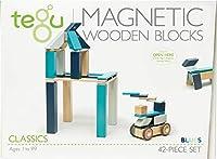 Tegu (テグ) マグネット木製ブロックセット 42ピース 42P-BLU-508T