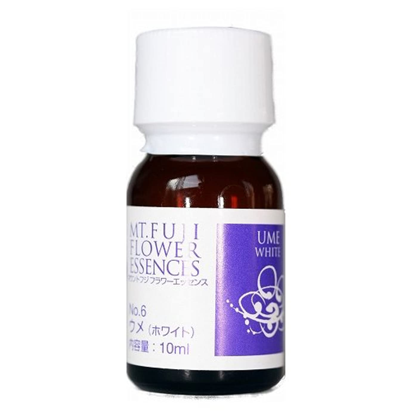 化学薬品猫背大破マウントフジ フラワーエッセンス ウメ(ホワイト) 10ml