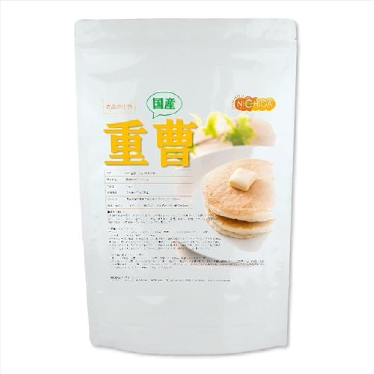 インフラ火星承認NICHIGA(ニチガ)AGC製 重曹 食品添加物(食品用) 950g
