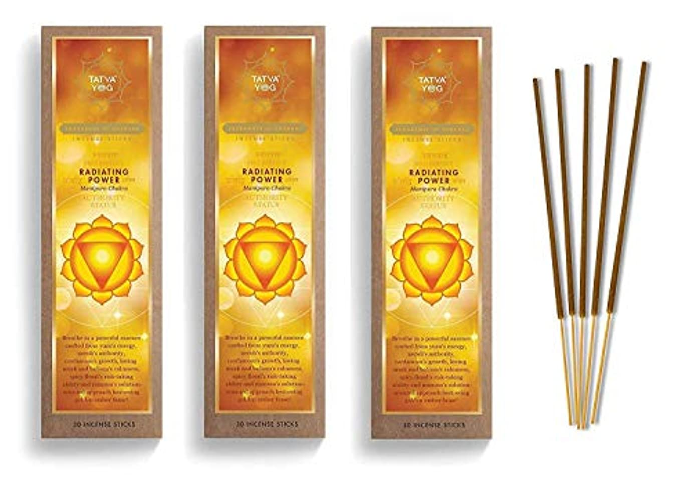 頑張るシャツ水銀のRadiating Power Long Lasting Incense Sticks for Daily Pooja|Festive|Home|Scented Natural Agarbatti for Positive Energy|Good Health & Wealth (Pack of 3 | 30 Sticks Per Pack)