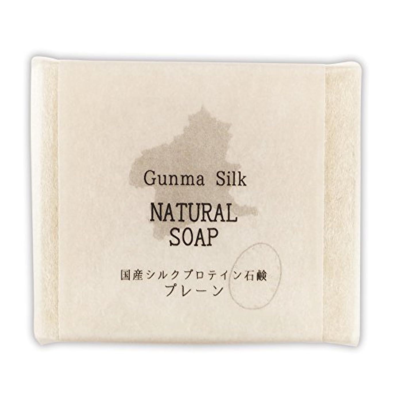 物足りないくぼみどきどきBN 国産シルクプロテイン石鹸 プレーン SKS-01 (1個)