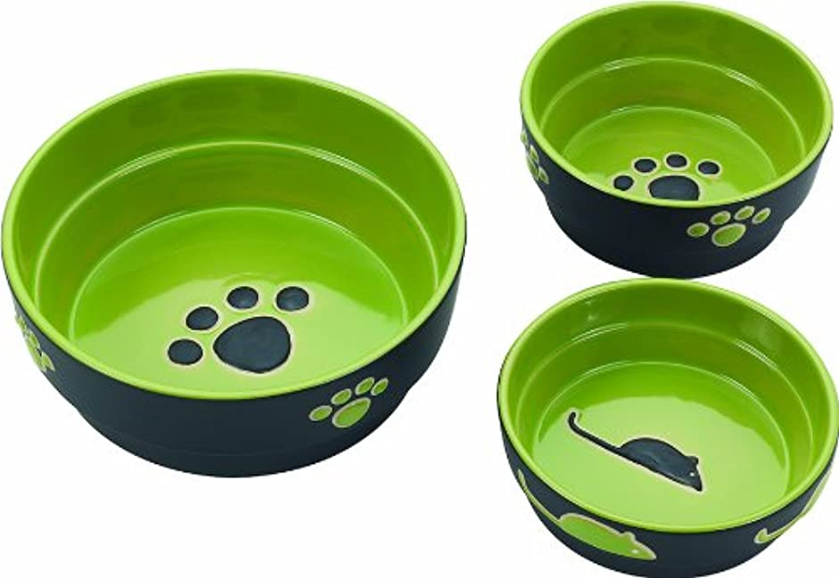 良心的差し引く無駄Ethical Stoneware Dish 688840 5 in. Fresco Dog Dish - Green