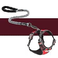 大型犬のための牽引ロープの引き込み式の犬のロープのベスト胸部ストラップ防爆急いで犬の鎖灰色のロープ+胸部ストラップ(赤)xl
