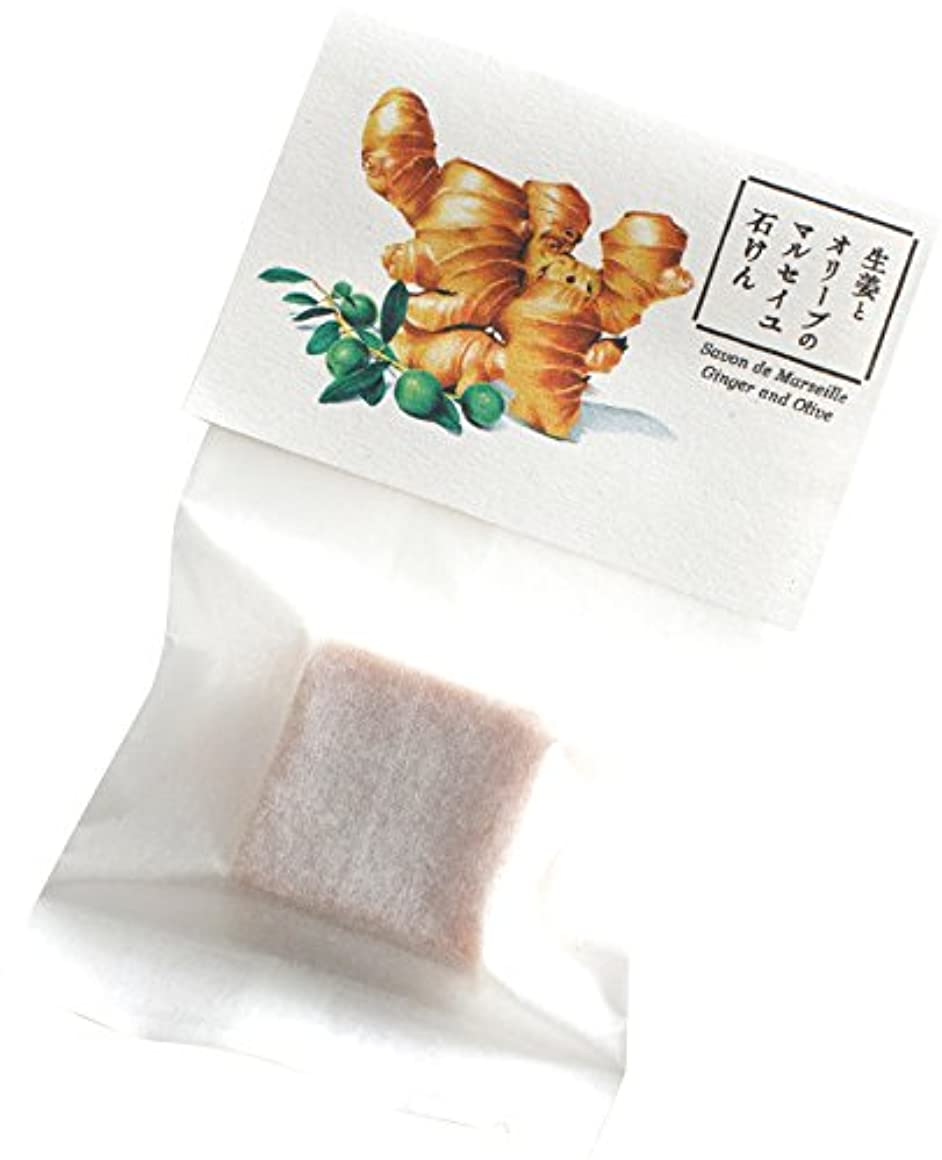 損傷びっくりするシェルターウェルコ 洗顔料 生姜とオリーブのマルセイユ石けん お試し用 10g