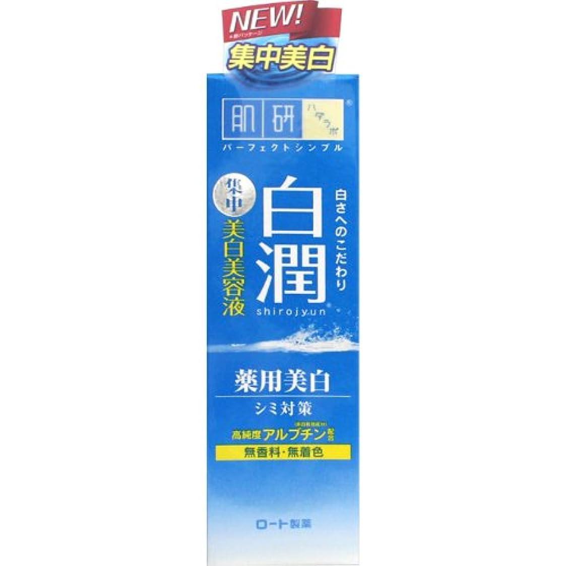 配管ボンド不実【医薬部外品】肌研(ハダラボ) 白潤 薬用美白美容液 30g