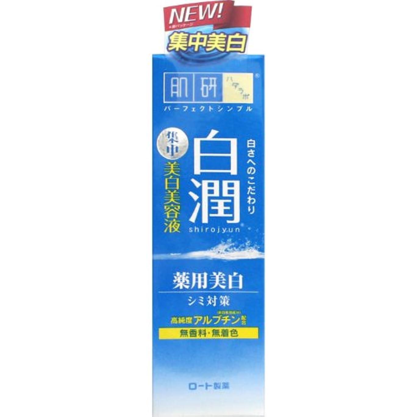 把握思いやりのあるしみ【医薬部外品】肌研(ハダラボ) 白潤 薬用美白美容液 30g