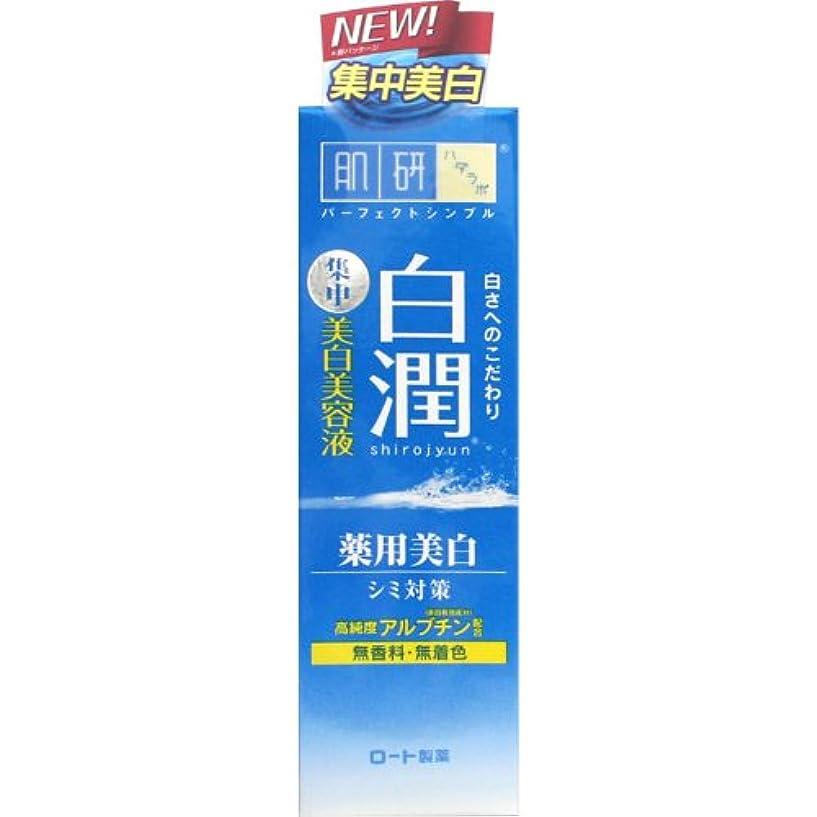 送金地上の航空会社【医薬部外品】肌研(ハダラボ) 白潤 薬用美白美容液 30g