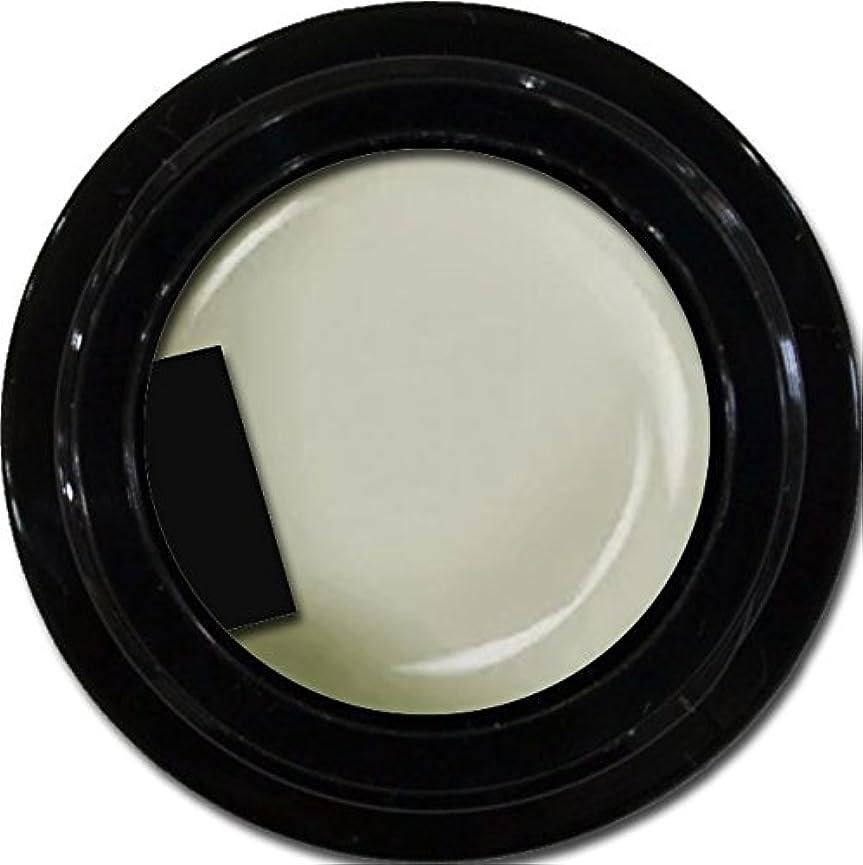 アンソロジー照らすスナックカラージェル enchant color gel M803 MilkyWay 3g/ マットカラージェル M803 ミルキーウェイ 3グラム
