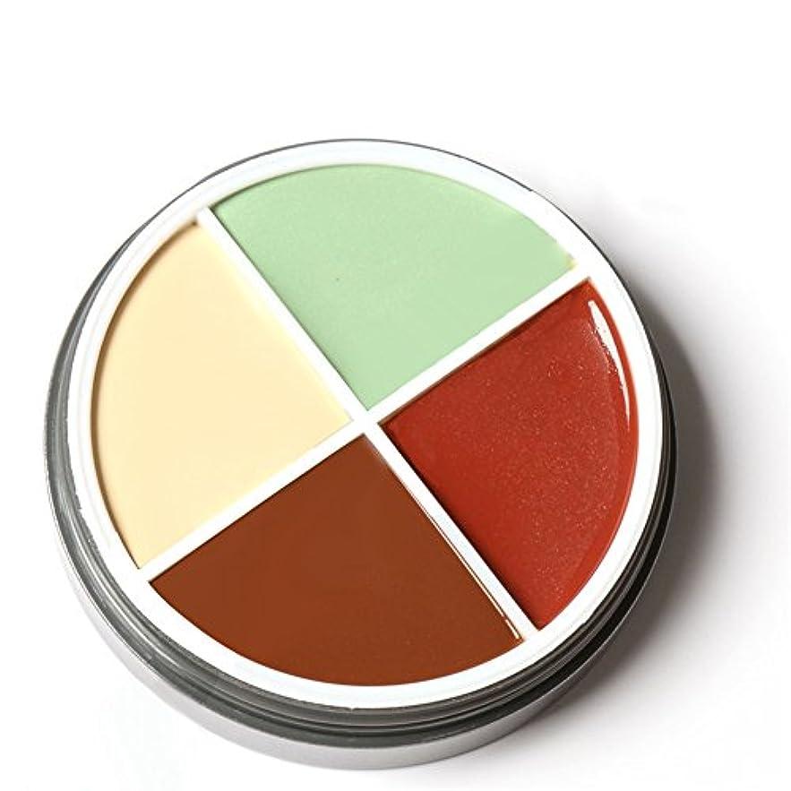 スペイン語支出根拠RaiFu ファンデーション ファンデーションパレット デリケート 防水 化粧品 メーキャッ プコンシーラー 4色 M4030#2