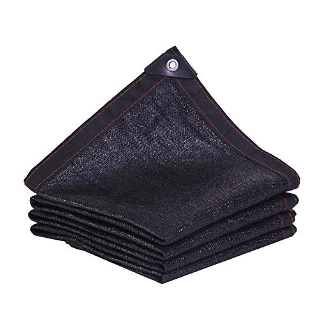 入力味方ボーダーZEMIN オーニングシェード遮光ネット サンシェード 厚い 黒 シェード 暗号化 屋上 車、 マルチサイズカスタマイズ (Color : Black, Size : 5x6m)