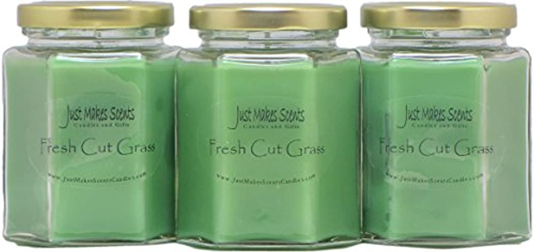 壊れた主張するテラスFresh Cut Grass香りつきBlended大豆キャンドル| Grass Fragrance |手Poured in the USA by Just Makes Scents。。。 3 Pack グリーン