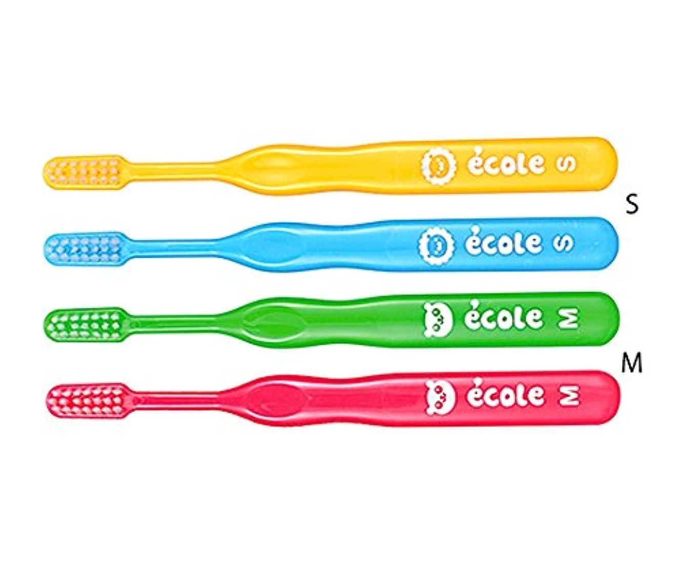 現代粘着性コンセンサス歯愛メディカル 歯ブラシ 子供用サイズ リセラエコルS 48本入 8-7750-22