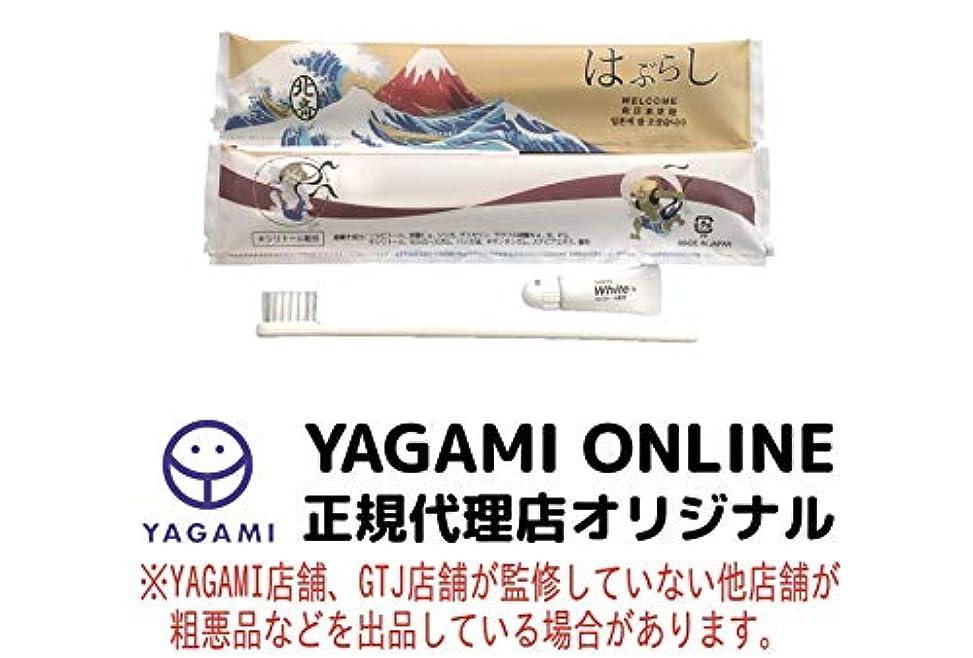 豊富にからかう若さ使い捨てハブラシ JS-5M 100本 日本製 JAPANSERIES アメニティ 日本シリーズ 葛飾北斎 100本セット