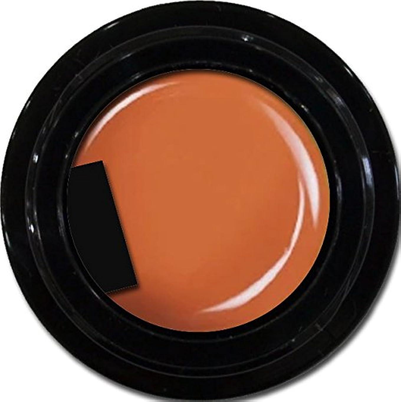 カラージェル enchant color gel M303 Halloween 3g/ マットカラージェル M303 ハロウィーン 3グラム