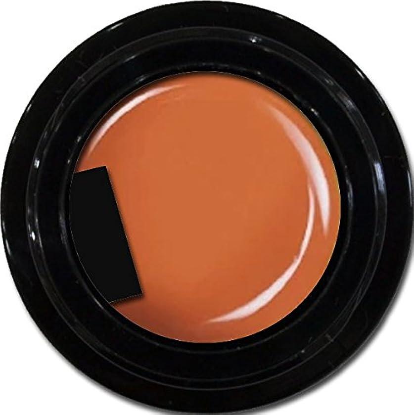 パラシュート弱いキリンカラージェル enchant color gel M303 Halloween 3g/ マットカラージェル M303 ハロウィーン 3グラム