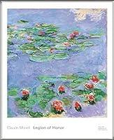 ポスター クロード モネ 睡蓮 1914-1917 1914-1917 額装品 アルミ製ハイグレードフレーム(シルバー)