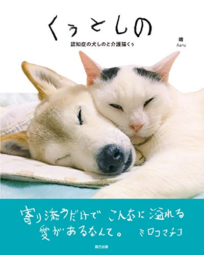 [画像:くぅとしの 認知症の犬しのと介護猫くぅ]