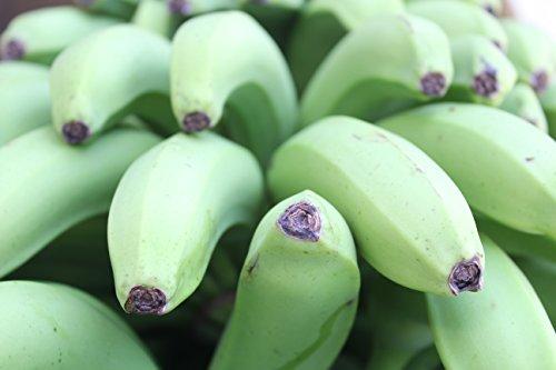 沖縄産三尺バナナ2kg