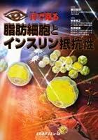 目で見る脂肪細胞とインスリン抵抗性
