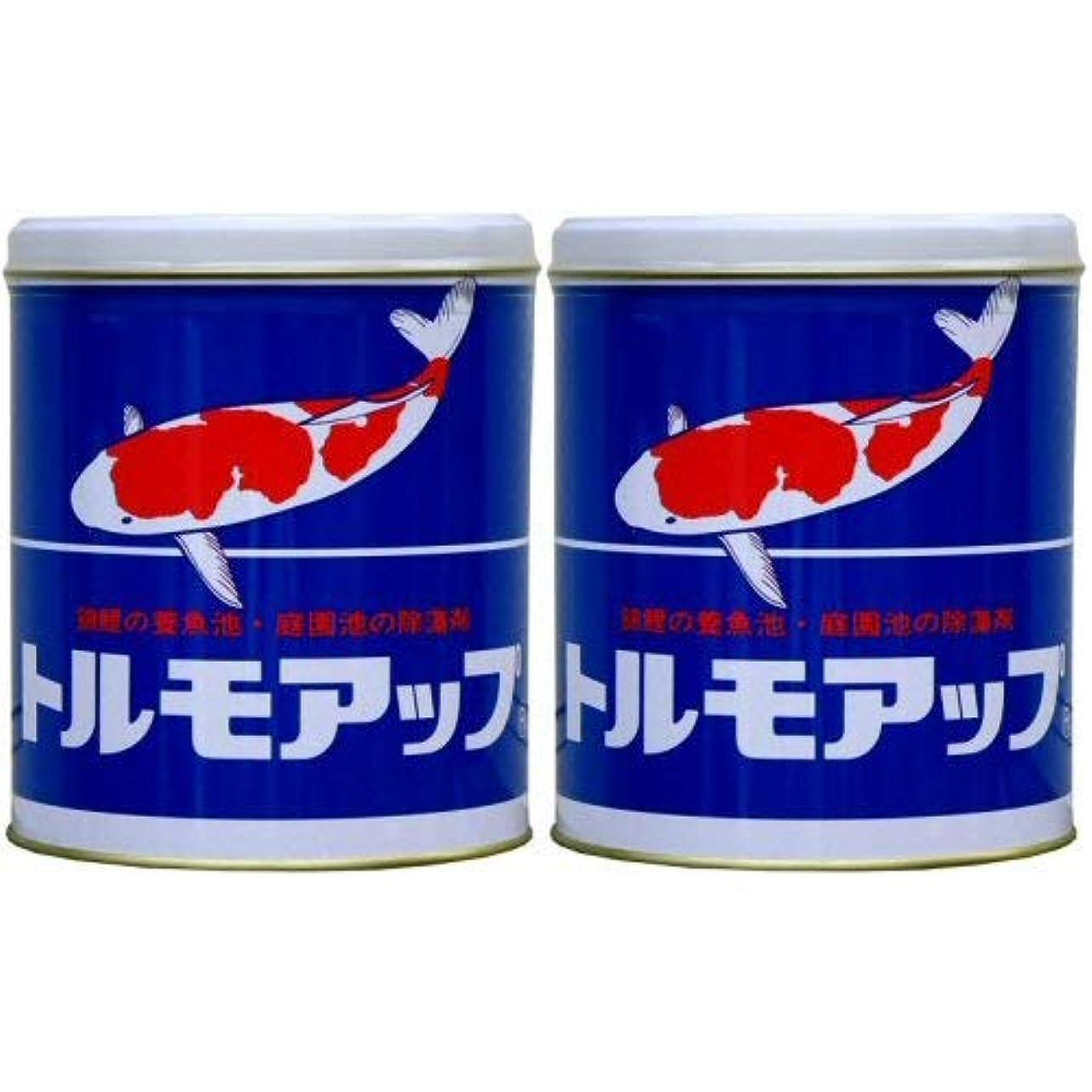 撃退する和解する現代のトルモアップ 600g×2缶
