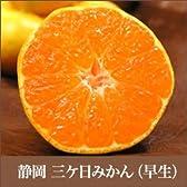 静岡 浜名湖 三ケ日みかん 「早生(わせ)」 5kg