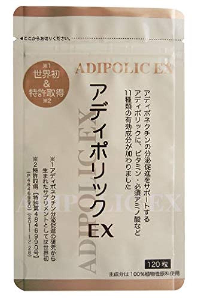 タックアナログ水銀のアディポリックEX 120粒
