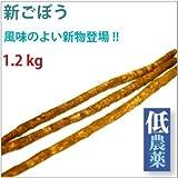 新ごぼう (低農薬)  1.2kg  【送料込】