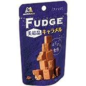 森永製菓 ファッジ 美結晶 キャラメル 38g×10個入 ケース売り