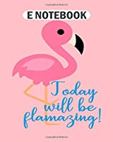 E Notebook: flamingo splash  College Ruled - 50 sheets, 100 pages - 8 x 10 inches