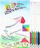 風飛行機 kaze-hikouki 折リ紙 飛行機 5機入り アソート 5色 (1パック)
