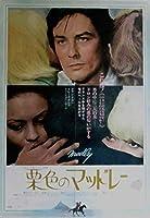 アラン・ドロン*映画ポスターです!栗色のマッドレー*'71年封切り 昭和ヴィンテージ初版ポスター!165-47 (四つ折りあり)