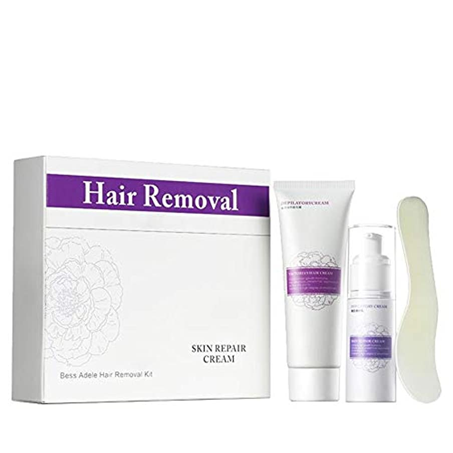パステル予防接種十分ではない除毛クリーム 修復用ミルクスクレーパー優しい脱毛は肌を傷つけません、ファースト&シンプル、肌の潤いを和らげ、保ちます