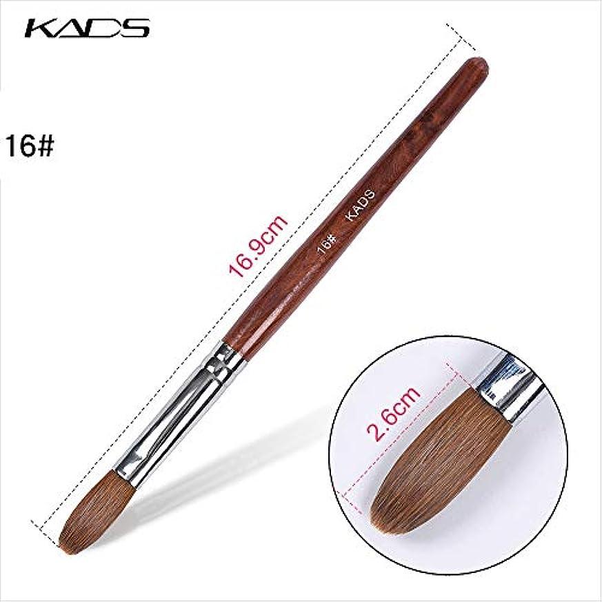 放つ資本銀KADS アクリルネイルブラシ 高品質コリンスキー製 16# ウッドハンドル 高級感 スカルプネイル用筆 ネイルアート専用ブラシ (16#)