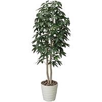 光触媒 人工観葉植物 光の楽園 パキラツリー 1.6m 170A300