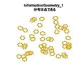 分布は点である: 統計遺伝学のための情報幾何1